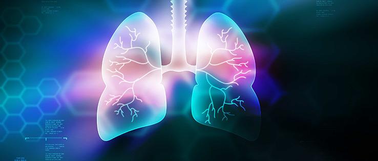 kronik solunum hastalıkları ve pulmoner rehabilitasyon